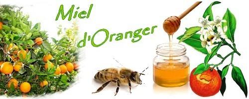 miel d`oranger