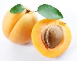 les bienfaits des fruits et légumes : abricot